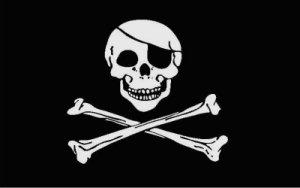 La cumbre de Washington: ¿piratería o salvación?