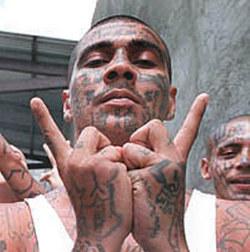 España: paraiso de las mafias y hogar de delincuentes