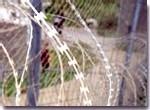El ejército fracasa en el control de la frontera de Melilla