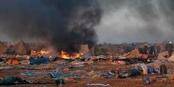 Silencio cobarde de España ante los abusos de Marruecos en el Sahara