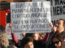 """Increible, pero cierto: la Junta de Andalucía exhibe sus """"exitos"""" educativos"""