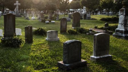 Los muertos también son esquilmados