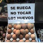 Dia Mundial del Huevo
