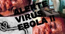 El ébola será una ruina para España y le costará cientos o quizás miles de millones de euros