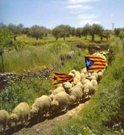 La fascinación del fascismo catalán