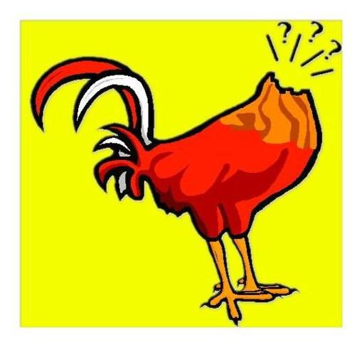 La España delirante de los políticos: Como pollos sin cabeza