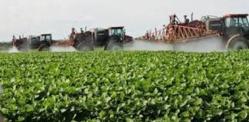 Los ricos, al consumir alimentos orgánicos, vivirán más que los pobres, que comen basura