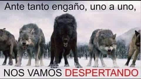 Pablo Iglesias es asesorado por Zapatero, el mejor presidente de la democracia