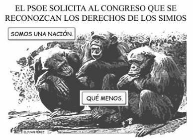 España: política simiesca (reflexión para el fin de semana)