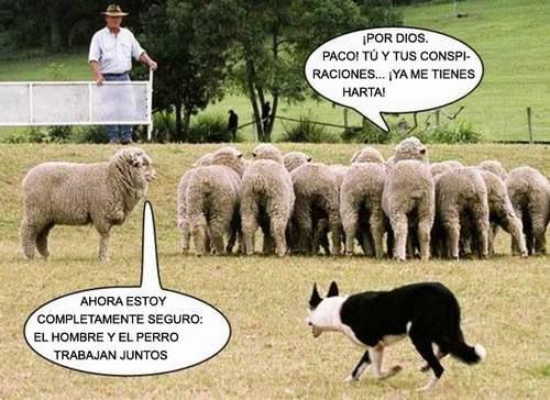 HAY PSICÓPATAS PEORES QUE LOS POLITICOS