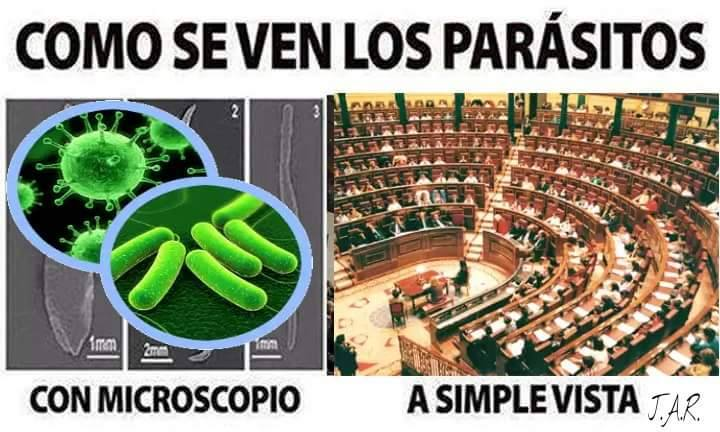 Las autonomías: criaderos de parásitos en España