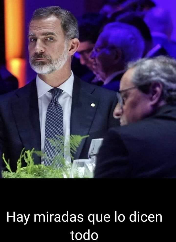 La mirada estremecedora del Rey al desleal Quim Torra, resumen de la situación de peligro que atraviesa España