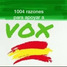 Hay muchas razones para votar a VOX, muchas