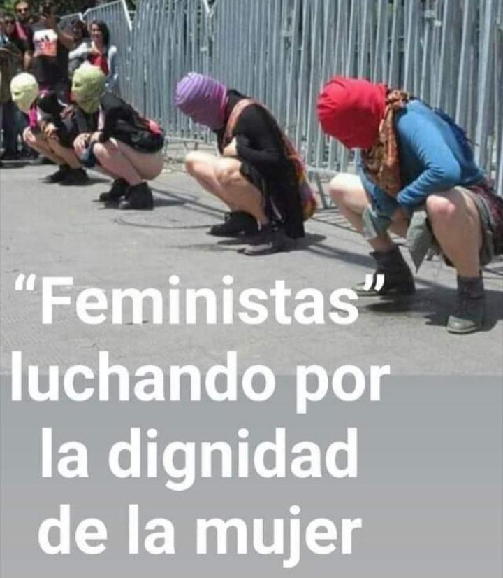 Una de las muchas fotos contra los abusos del feminismo radical que circulan por Internet