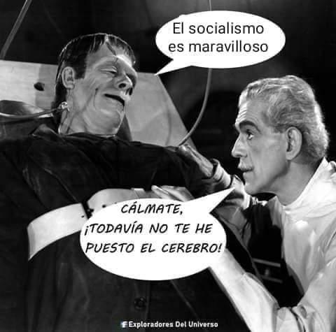 EL SOCIALISMO TIENE LA CULPA DE QUE EL ESTADO SEA UN MONSTRUO INEPTO Y DAÑINO