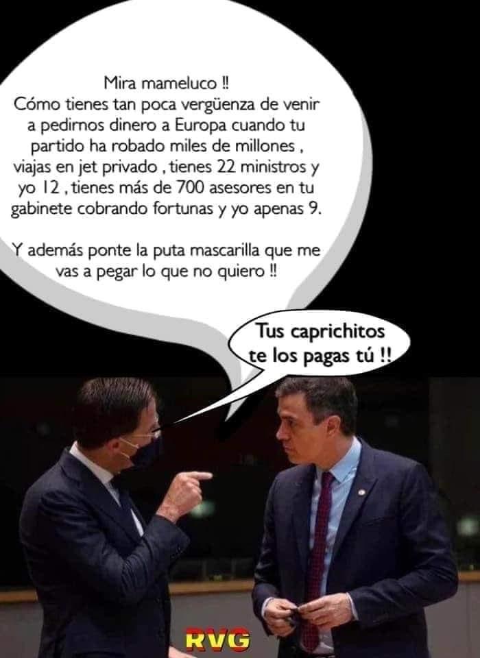 "LA ""PATOCRACIA"" ESPAÑOLA"