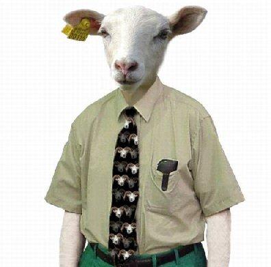 España: pastores y rebaños sin ciudadanos