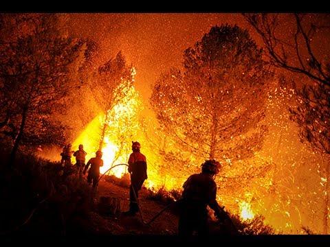 Fuego contra fuego: los políticos también destruyen los bosques de España