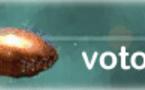 Voto en Blanco cierra durante el mes de Agosto de 2014
