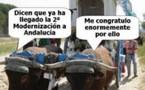 Elecciones 2008: la lamentable agonía del 'Andalucísmo'