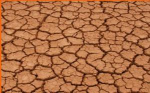 España: la sequía pone en evidencia la imprevisión de los gobiernos