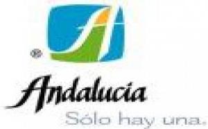 Lo que Andalucía necesita es una 'perestroika'