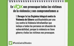 Las leyes españolas de género podrían ser anticonstitucionales