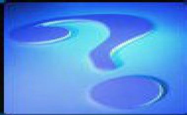 Preguntas inocentes; respuestas indiscretas (4)
