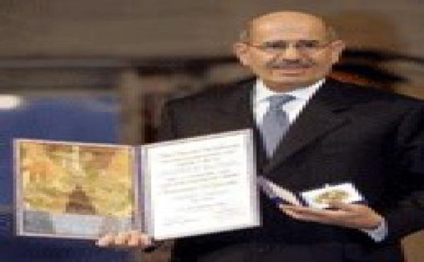Mohamed el Baradei tiene razón