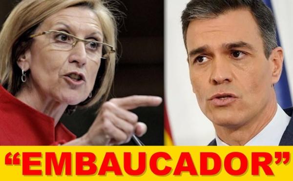 Inhabilitar a Pedro Sánchez